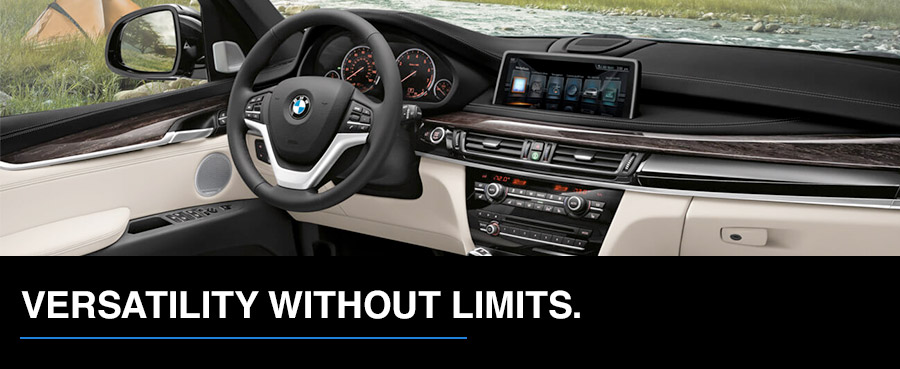 The 2017 BMW X5