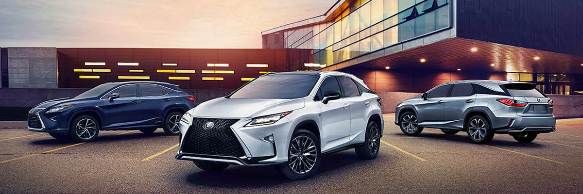 2019 Lexus RX 350 line up